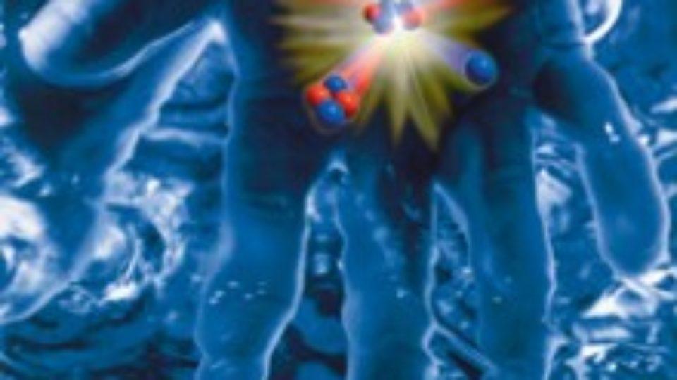 84b7Cum reducem cantitatea de deuteriu din organism
